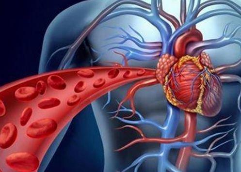 DVgqoCMV4AATudO 1 - Cambridge Biomedical Campus Heart week